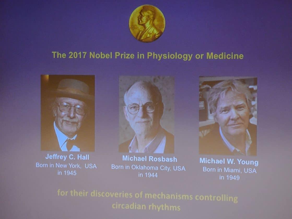 Nobel Palkinto 2021